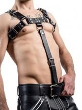 Postroje, harnessy